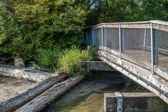 Gene Coulon Park Bridge 4. A view of a walking bridge at Gene Coulon Park in Renton, Washington stock image