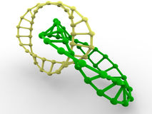 Gene in DNA. Royalty Free Stock Photos