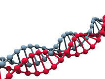 Gene in DNA. illustrazione vettoriale