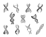 Gene DNA helix vector isolated icons set. DNA helix or gene and genetic molecule icons set. Deoxyribonucleic acid molecular structure vector isolated symbols for Stock Images