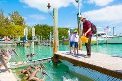Gene e dois meninos da criança que alimentam peixes e pelicanos Fotos de Stock Royalty Free