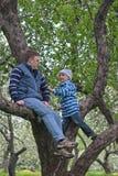 Gene e seu filho que joga em uma árvore de maçã Fotos de Stock Royalty Free