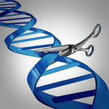Gene Editing. Health care concept as molecular scissors cutting a dna strand as a medical science and biology technology symbol for changing genetic material to Royalty Free Stock Image