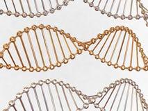 Gene no ADN fotografia de stock
