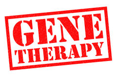 GENE THERAPY. Red Rubber Stamp over a white background Stock Images