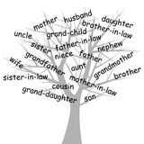 Genealogical_tree. Stylized genealogical tree over white background stock illustration