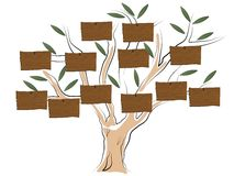 Genealogical tree Stock Photos
