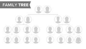Genealogical Tree Template Vector. Family History Tree With Default People Portraits. Family Tree Chart Illustration Royalty Free Stock Photo
