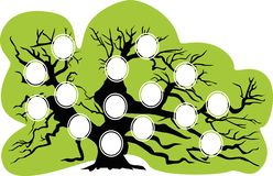 Genealogical tree. Vector illustration royalty free illustration