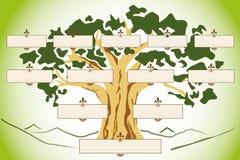 genealogico för albero 2bn Arkivbild