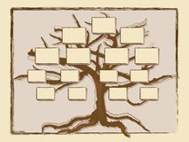 Genealogische boom Stock Afbeeldingen