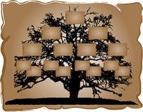 Genealogische boom stock illustratie