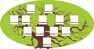 Genealogische boom Vector illustratie vector illustratie