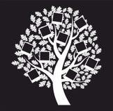 Genealogisk tree för familj på svart bakgrund, vektor Arkivbilder