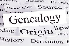 Genealogy Concept. A conceptual look at genealogy, blood line, origins, source, and history stock image