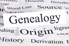 Genealogy Concept in Words. A conceptual look at genealogy, blood line, origins, source, and history royalty free stock photography