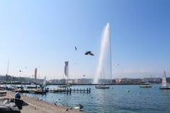 GENEBRA - 7 DE SETEMBRO: moorage no lago geneva em setembro Foto de Stock Royalty Free