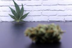 Geneeskrachtig van de marihuanaknoppen en cannabis blad stock foto's