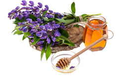 Geneeskrachtige kruiden, honing, natuurlijke capsules en pillen in geneeskunde stock afbeelding
