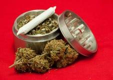Geneeskrachtige marihuana Royalty-vrije Stock Foto's