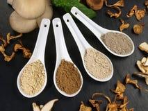 Geneeskrachtige Paddestoelen - Gezonde Voeding royalty-vrije stock foto
