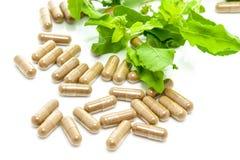Geneeskundekruid Stock Foto's