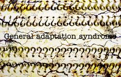 General adaption syndrome. Close up of General adaption syndrome royalty free stock images
