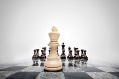 The general before the battle field. Royalty Free Stock Images