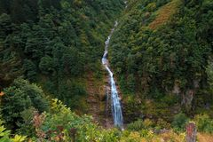 Waterfall in Ayder Plateau Rize. General landscape view of waterfall on a mountain in Ayder Plateau, Rize. Waterfall is flowing between trees Royalty Free Stock Image