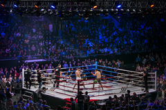 General plan of sports arena during fight in ring, fighters and referee across ring fans Stock Photo