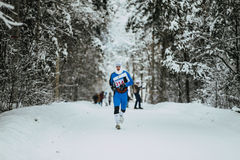 General plan winter forest and young athlete running in cold weather Stock Photography