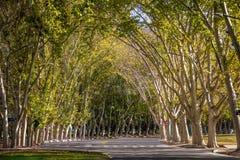 General San Martin Park - Mendoza, Argentina imagem de stock