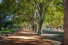 General San Martin Park - Mendoza, Argentinien stockfotografie