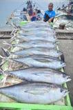 General Santos, Filipinas - 5 de septiembre de 2015: El atún está siendo Imagen de archivo libre de regalías