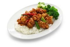 General tso's chicken with rice. American chinese cuisine isolated on white background royalty free stock photography