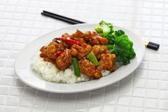 General tso's chicken with rice royalty free stock photography