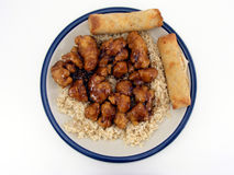 General Tso's Chicken #3 Stock Image