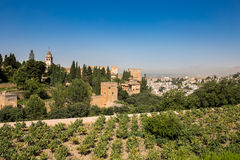 General view of the Alhambra. Granada, Spain on a hot summer day Royalty Free Stock Photos
