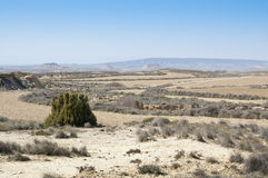 General view of Bardenas Reales Stock Photos
