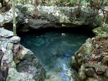 General view of cenote near Chichen Itza, Mexico Stock Photos