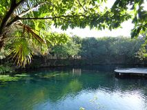General view of cenote near Chichen Itza, Mexico Royalty Free Stock Photography