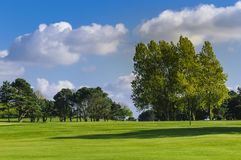 General view of a green golf course on a bright sunny day. Idyllic summer landscape. Sport, relax, recreation and Royalty Free Stock Images
