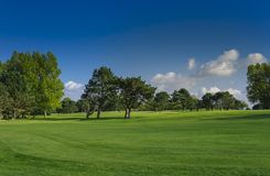 General view of a green golf course on a bright sunny day. Idyllic summer landscape. Sport, relax, recreation and Stock Photography