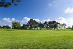 General view of a green golf course on a bright sunny day. Idyllic summer landscape. Sport, relax, recreation and Royalty Free Stock Photo