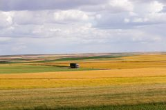 Road truck in landscape of multicolored fields with various crop. General view of a truck crossing between flat agricultural fields with various crops and colors stock images