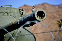 Generale Patton Memorial Museum Tanks immagini stock libere da diritti