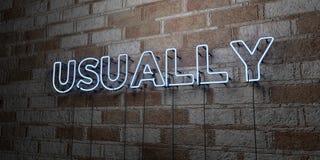 GENERALMENTE - Señal de neón que brilla intensamente en la pared de la cantería - 3D rindió el ejemplo común libre de los derecho stock de ilustración