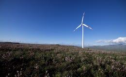 Generating renewable energy Stock Photography