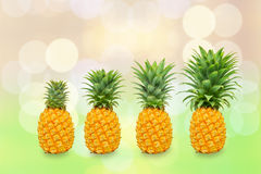 Generation of pineapple tree stock photo