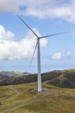Generator för makt för turbin för vindlantgård Royaltyfria Bilder